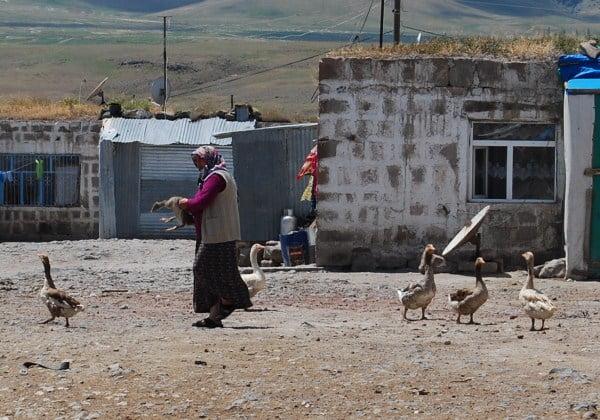 Village of Anikoy