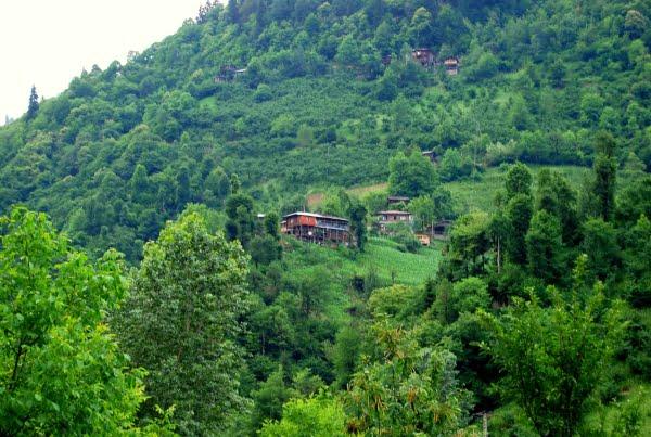 Houses of Efeler vadisi