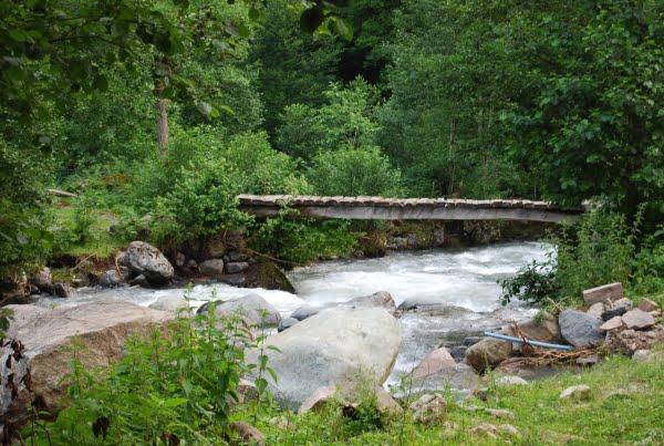 River through Efeler Vadisi