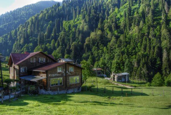 Hotel ayder plateau