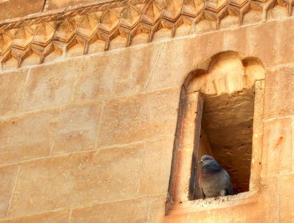 Sanliurfa - the city of Abraham