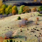 17 Tilt Shift Photo Examples From Around Turkey