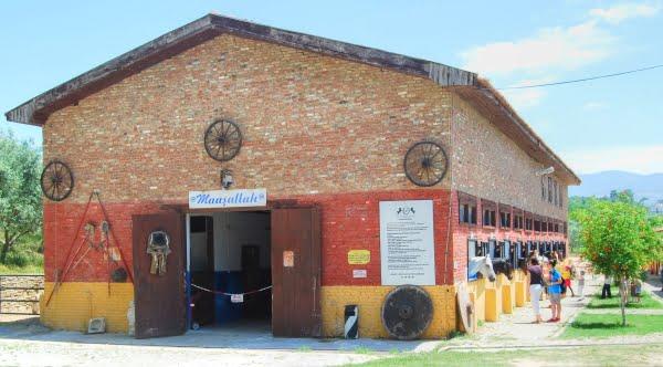Degirmen Farm, Horse Ranch Kusadasi