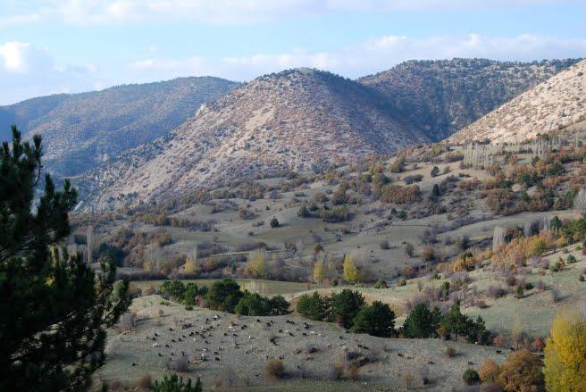 Inozu vadisi Beypazari Ankara