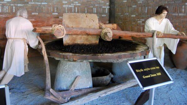 Olive Museum in Kusadasi