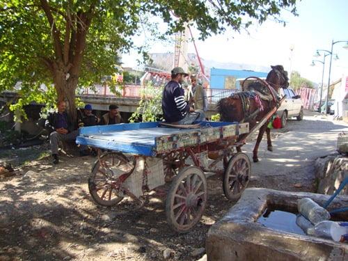 Work horses of soke