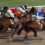 horse racing izmir