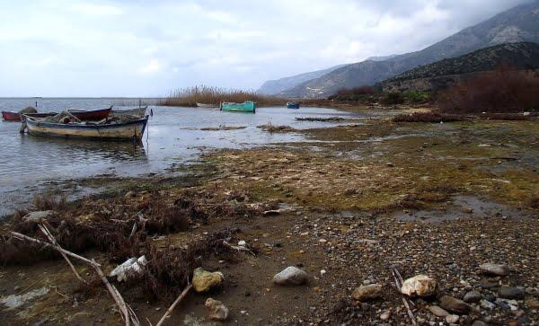 Doganbay