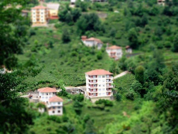 View from Caykur tea gardens
