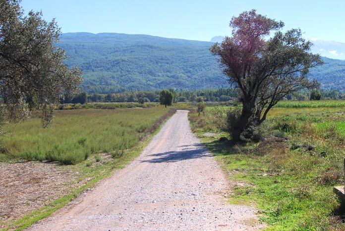 Road in turkey