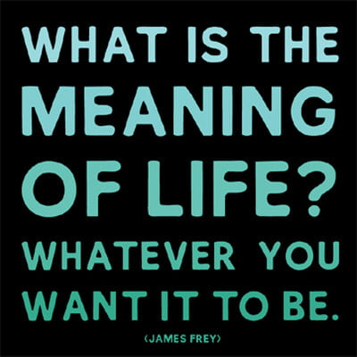 life is whatever you want it to be