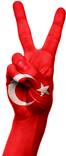 Expats in Turkey